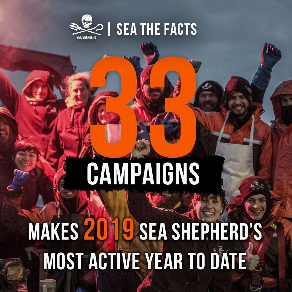 Sea the Facts 2019