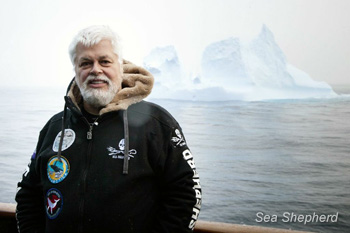 The Sea Shepherd II conducted the first anti-whaling operation in Russian territory in 1981