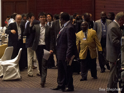 The Japanese and African delegations