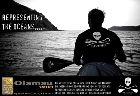 Sea Shepherd Paddle Advertisement