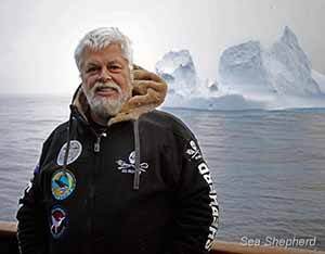 Paul Watson, acting as an observer, during Operation Zero Tolerance photo: Tim Watters