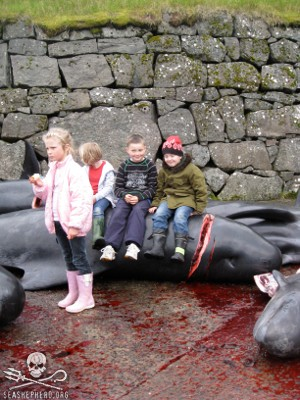 A morbid scene: Children sit upon a newly killed Pilot Whale after a Grind in The Faroes.