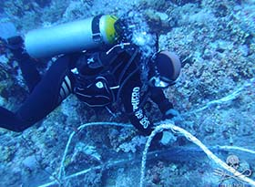 Diver clearing longline
