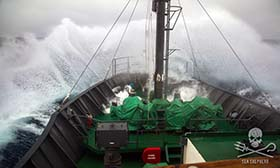 Sea Shepherd weathers the storm in its continuing battle to save the oceans. Photo: Giacomo Giorgi