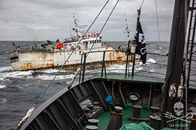 "The toothfish-poaching vessel, Kunlun: one of the ""Bandit 6"" still at large in the Southern Ocean. Photo: Jeff Wirth"