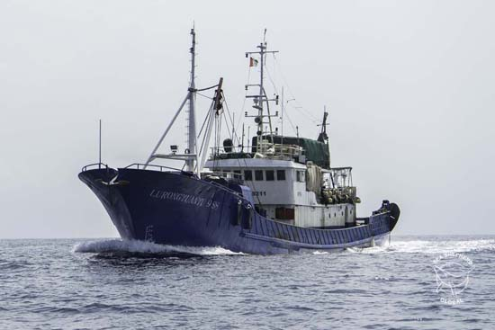 Lu Rong Yuan Yu 988 arrested and en route to Monrovia. Photo: Alejandra Gimeno / Sea Shepherd Global