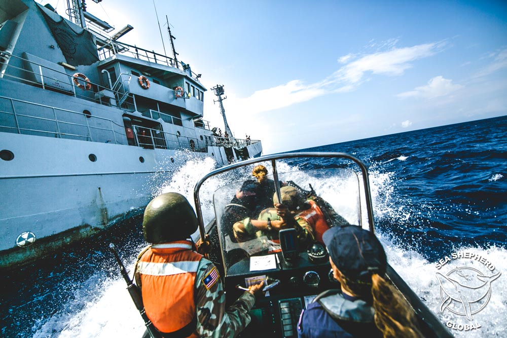 The Hunter team returns from a boarding operation. Photo: Sea Shepherd Global / Michael Rauch