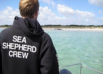 editorial_090223-1_0958_sea_shepherd