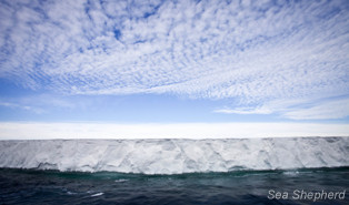 The Ross Ice Shelf. Photo: Barbara Veiga