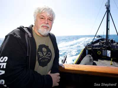 editorial 120918 1 2 101228 BARBARA VEIGA CAPTAIN PAUL WATSON AND THE GOJIRA FROM THE STEVE IRWIN ANTARCTICA 5650 1