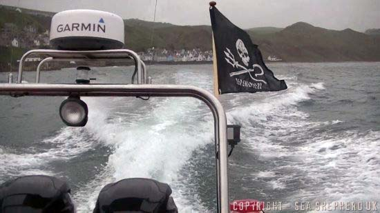 Sea Shepherd UK on patrol defending seals in Scotland