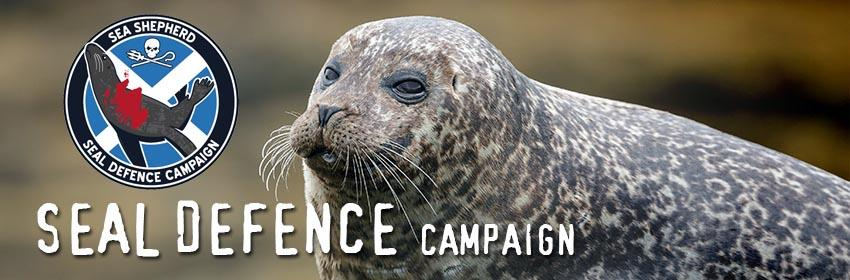 Seal Defence Campaign