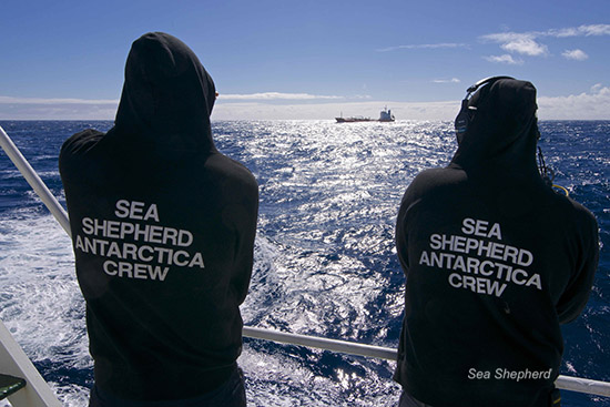 Crew members of the SSS Sam Simon watch the Sun Laurel in the distance