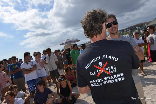 A small minority of surfers have been advocating the slaughter of the sharks and viciously denouncing Sea Shepherd for defending the sharks. This is an anti Sea Shepherd T shirt accusing us of killing surfers by saving sharks