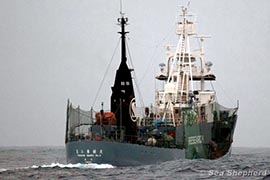 File photo: Yushin Maru No 3 during Operation Divine Wind in January 2012