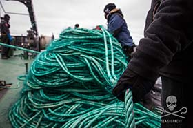 Sam Simon confiscate lines from the illegal gillnet.  Photo: Jeff Wirth