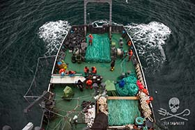 The strategic gillnet retrieval operation as it unfolds on the aft-deck of the Sam Simon. Photo: Giacomo Giorigi