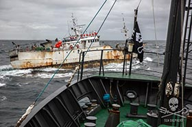 The poaching vessel, Kunlun, crosses the bow of the Sam Simon. Photo: Jeff Wirth
