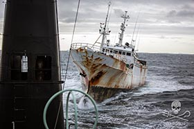 The poaching vessel, Yongding, turned toward the Sam Simon, missing a collision by 10 metres. Photo: Jeff Wirth