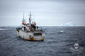 The Kunlun sails towards drift ice in an attempt to flee from the Sam Simon. Photo: Jeff Wirth