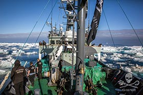 The Sam Simon, surrounded by drift ice while in pursuit of the poaching vessel, Kunlun. Photo: Jeff Wirth