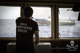 Capt. Peter Hammarstedt watches as the Thunder prepares to fish. Photo: Simon Ager