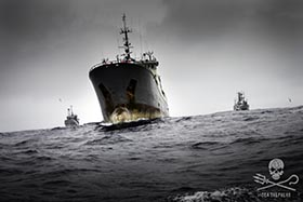 The Bob Barker and the Sam Simon in pursuit of the poaching vessel, Thunder, during Operation Icefish. Photo: Simon Ager