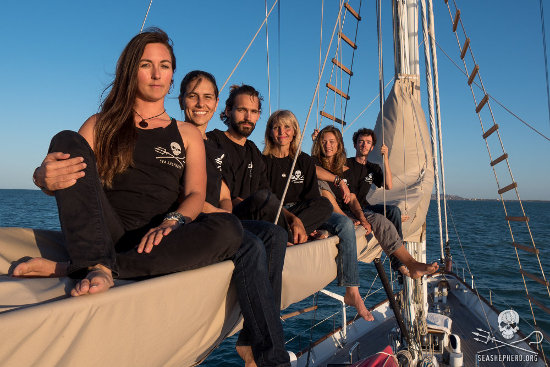 The crew of the R/V Martin Sheen on a mission to save the remaining vaquitas in the Sea of Cortez.