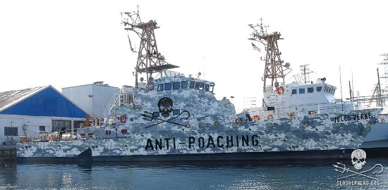 An artist rendering of the planned design of the new Sea Shepherd vessels