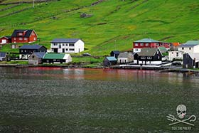 The waters run red at Hvannasund in the Faroe Islands as approximately 20-30 pilot whales are slaughtered. Photo: Nils Greskewitz