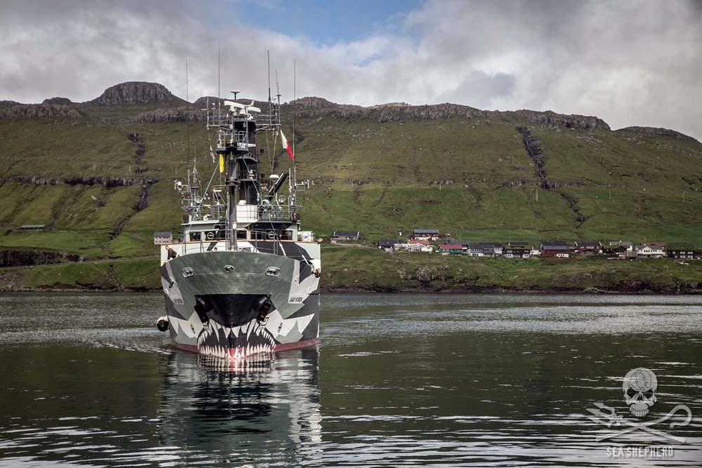 Sea Shepherd Faroe Islands
