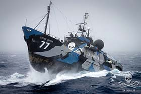 "Sea Shepherd's flagship, the Steve Irwin will depart from Melbourne, Australia in December to patrol the ""shadowlands"" of the Southern Ocean. Photo: Simon Ager"