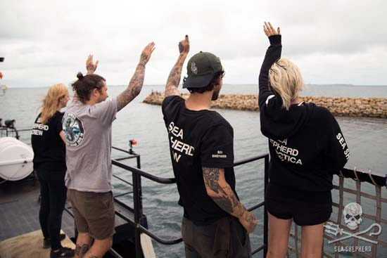 The crew of the Steve Irwin wave farewell to supporters, friends and family. Photo: Tim Watters