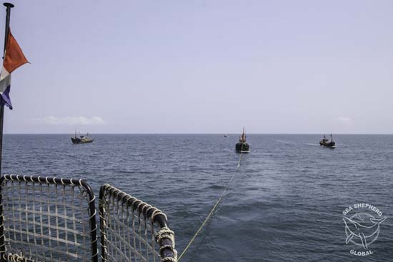 The Bob Barker assisted Gabonese authorities in the arrest of three illegal fishing trawlers in coastal waters off Gabon. Photo: Alejandra Gimeno