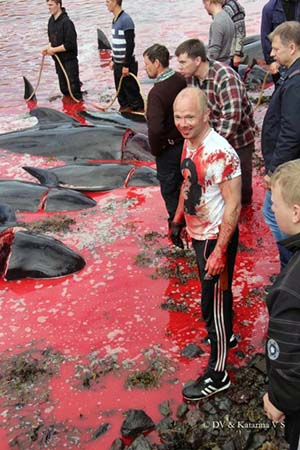 A Faroese local grins while covered in the blood of the slaughtered pilot whales. Image via nordlysid.fo