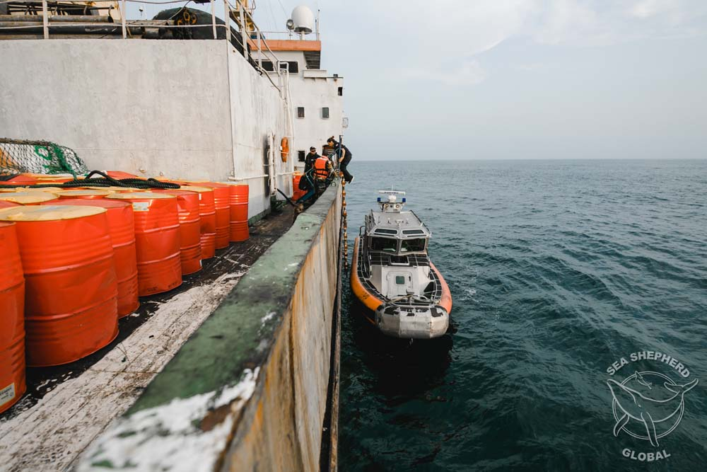 Sea Shepherd and Liberian Coast Guard boarding the M/V Lian Run. Photo: Michael Rauch/Sea Shepherd Global.