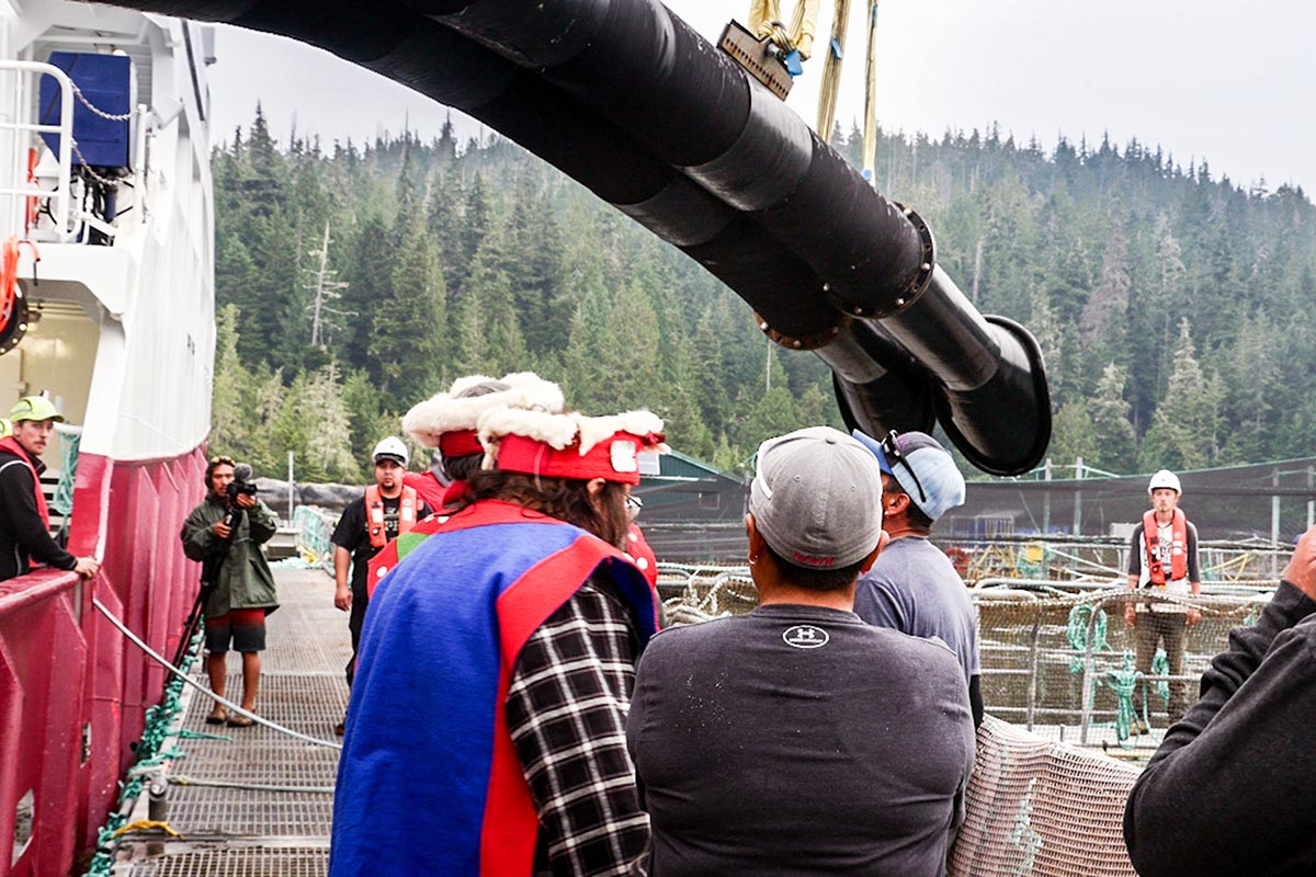 First nations block the Victoria Viking from pumping smolts into pen by blockading the transfer pipes