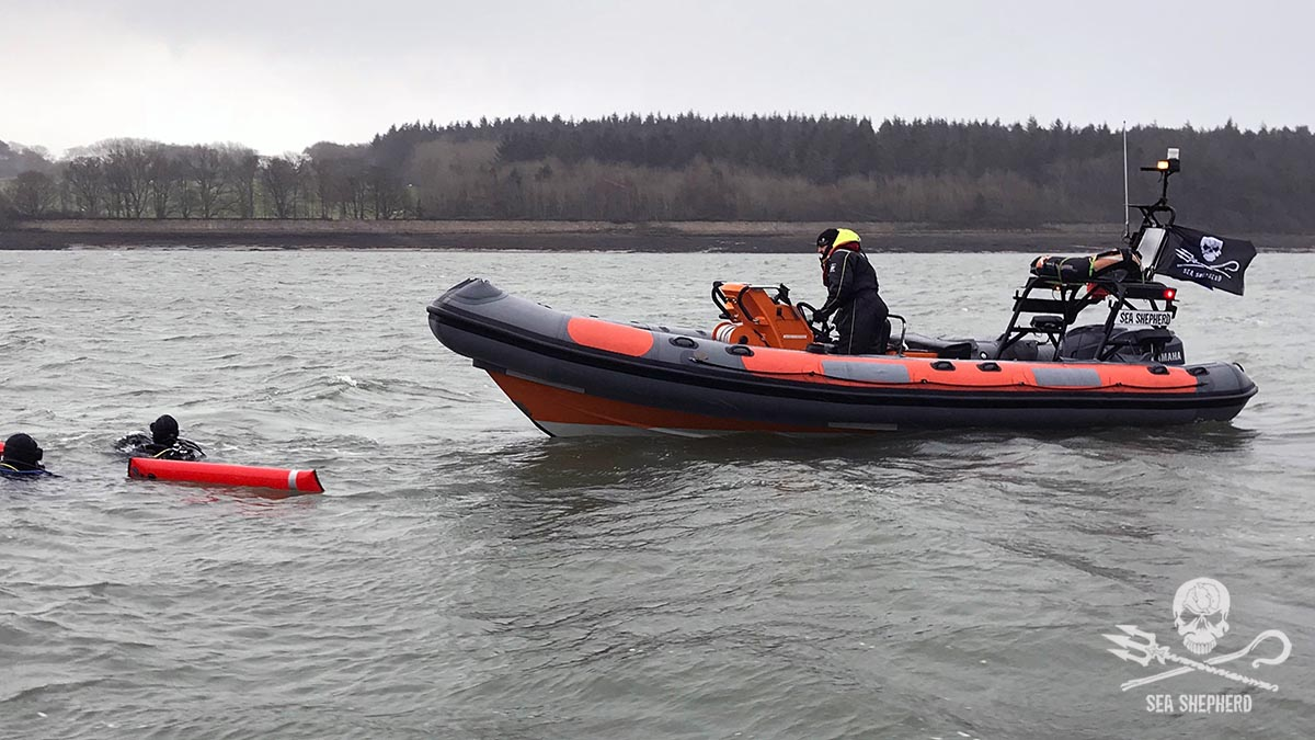 Sea Shepherd UK's new RHIB 'Ghost' with divers in the water off NW Wales during a ghostnet survey in December 2017