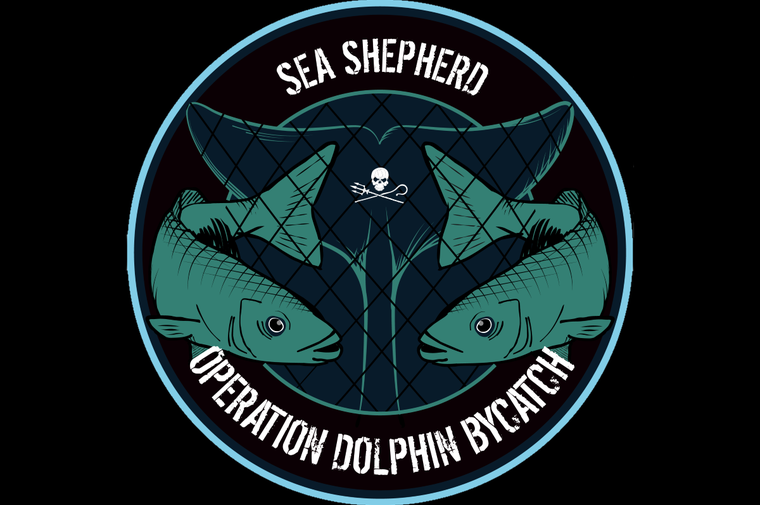 Operation Dolphin By Catch