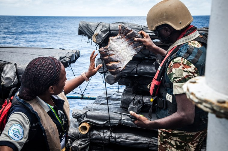 Law enforcement agents from Gabon's National Fisheries Agency and the Gabonese Navy carry out inspections while on patrol. Photo by Tara Lambourne/Sea Shepherd.