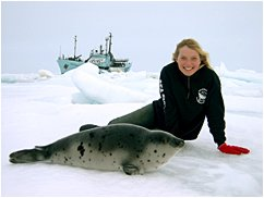 Lisa Moises with harp seal