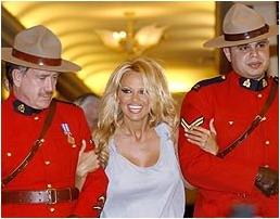 canadian Pamela anderson