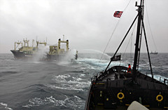 news_090413_1_2_090204_Nisshin_Maru_fires_its_water_cannons