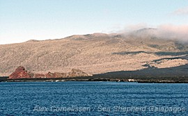 news_100729_1_5_Galapagos_Removed_from_World_Heritage_List_(AC80))