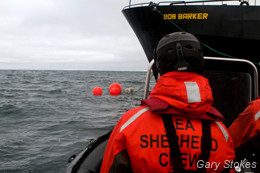 Sea Shepherd crewmembers approach the buoys in a Zodiac boat to search for markings