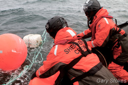 Sea Shepherd crewmembers pull in the illegal longline