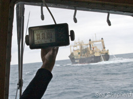 A crewmember holds up a device confirming the Nisshin Maru's location. Photo: Gary Stokes (click to enlarge)