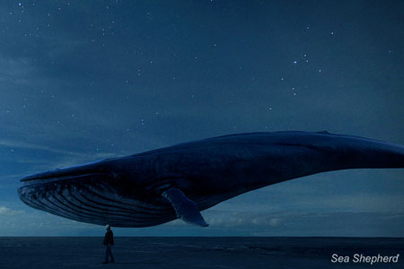 Rutger Hauer meets the last whale on Earth in Requiem 2019
