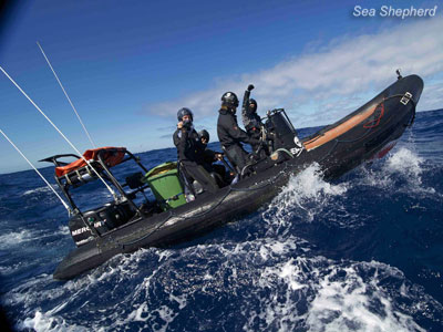 Help our crew achieve victory in the Southern Ocean