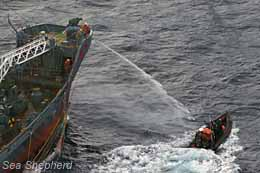 Yushin Maru sprays Delta boat with water cannon